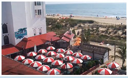 Red and white umbrellas cover tables at Coconuts Bar and Grill